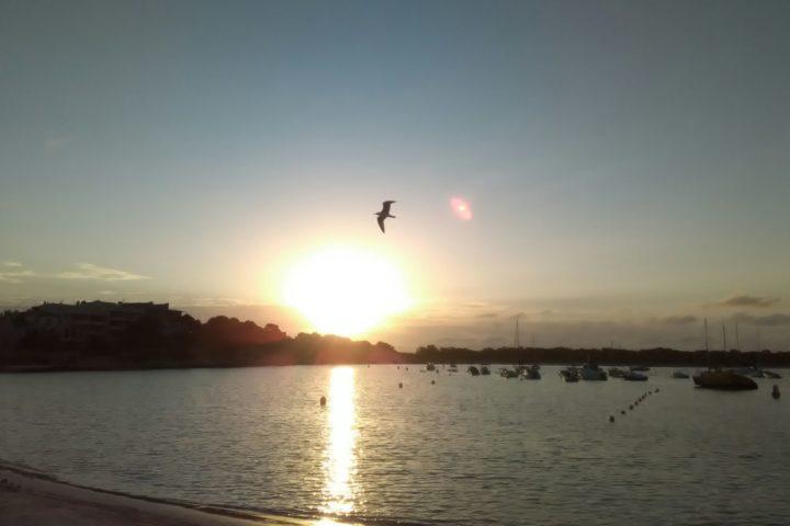 Sonnenaufgang Colonia St. Jordi