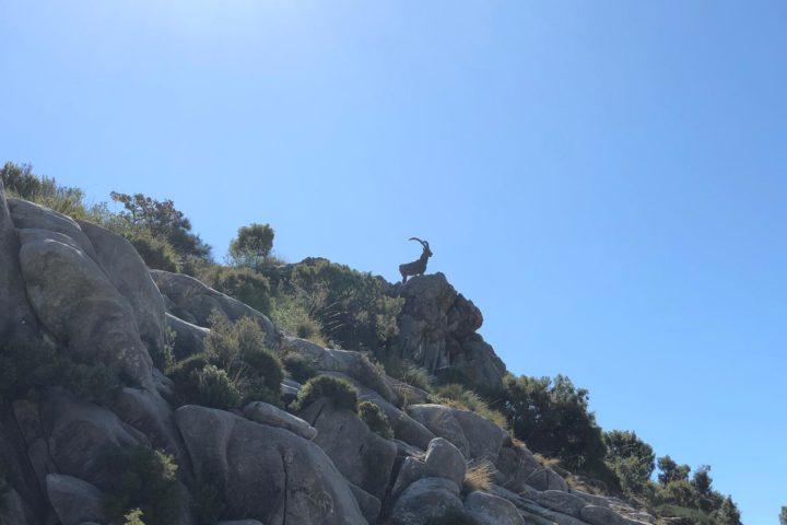 Wandern Marbella