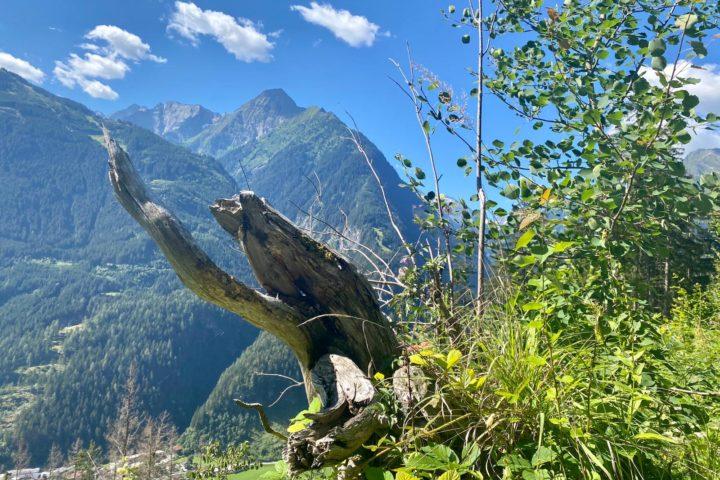 Fitnessreise Mayrhofen