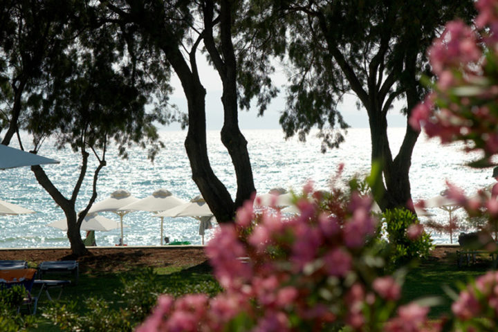 kalimera kriti - Hotel kreta